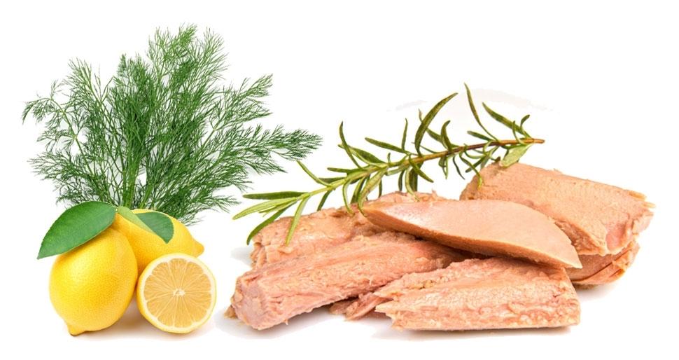 02102014113919_ilik-ton-baligi-salatasi[1]
